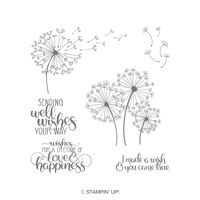 Dandelion Wishes von Stampin' Up!