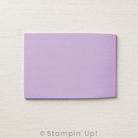 Stampin' Up! Reinigungsprofi Simply Shammy