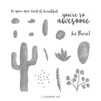 Flowering Desert von Stampin' Up!